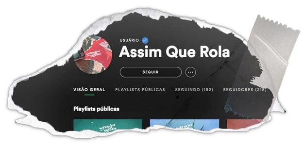 Perfil	Verificado no	Spotify